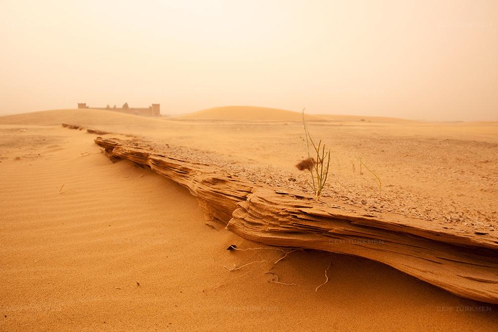 morocco-sahara desert-drought
